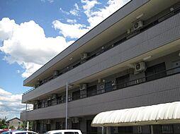 栃木県小山市駅南町6丁目の賃貸マンションの外観