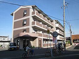 大阪府大阪狭山市半田2の賃貸マンションの外観