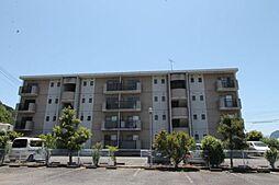 静岡県伊豆の国市寺家の賃貸マンションの外観