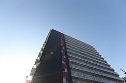 ビッグパレス南5条[7階]の外観