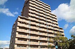 アメニティハイツ14[2階]の外観