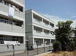 愛知県一宮市三条字ヱグロの賃貸マンションの外観