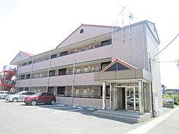 茨城県ひたちなか市大字中根の賃貸マンションの外観