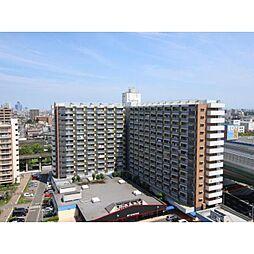 中駒九番団地8号棟[6階]の外観