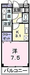 大阪府堺市中区深井畑山町の賃貸マンションの間取り