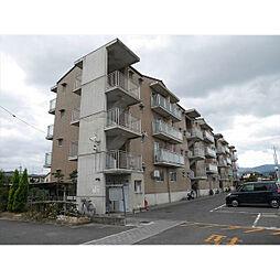 カーサNAKAMURA[2階]の外観