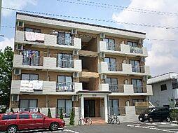 コスモ昭栄[402号室]の外観