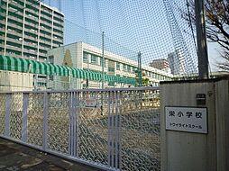 市立栄小学校