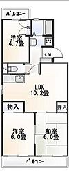 静岡県駿東郡清水町的場の賃貸マンションの間取り