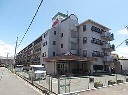 和歌山県和歌山市新中島の賃貸マンションの外観
