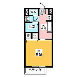 Surplus カメヤマ B