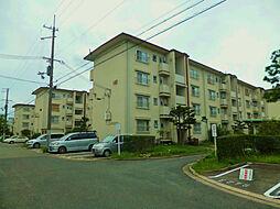 浜甲子園147号棟[502号室]の外観