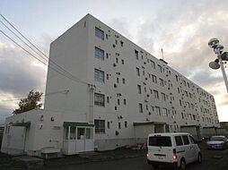 ビレッジハウス札苗1号棟[203号室]の外観