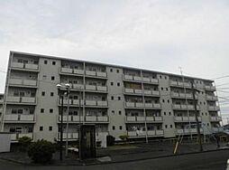 神奈川県愛甲郡愛川町春日台5丁目の賃貸マンションの外観