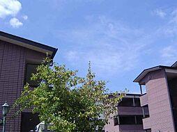 ベルヴィルD[2階]の外観