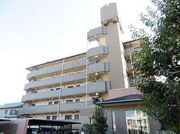 大阪府堺市北区北長尾町6丁の賃貸マンションの外観