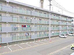 あかかべマンション[406号室]の外観