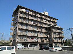 サンライズ日本[6階]の外観