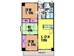 愛媛県松山市保免中2丁目の賃貸マンションの間取り