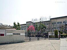八王子市立中山中学校 距離1750m