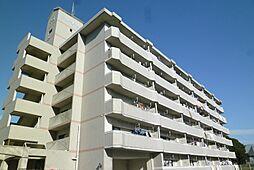 シャレール千鳥[6階]の外観