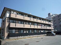 マルニハイツ[2階]の外観