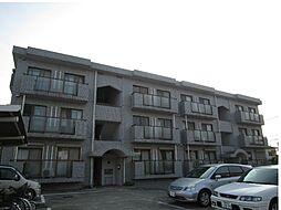 ソレイユ湘南[3階]の外観