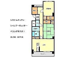 兵庫県神戸市垂水区福田4丁目の賃貸マンションの間取り