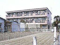 サンライズ旭[1階]の外観
