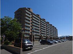 マンション(新川駅から徒歩5分、4LDK、1,698万円)