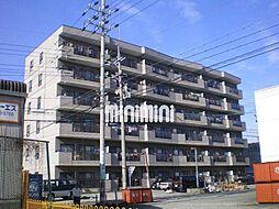 愛知県名古屋市中川区東起町3の賃貸マンションの外観