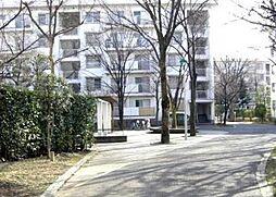 埼玉県さいたま市中央区八王子5丁目の賃貸マンションの外観
