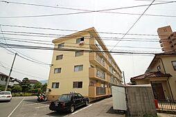 広島県広島市安佐南区川内6丁目の賃貸マンションの外観