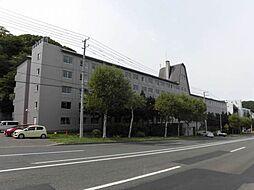 北海道札幌市中央区宮の森四条11丁目の賃貸マンションの外観