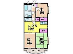 愛媛県松山市和泉南4丁目の賃貸マンションの間取り
