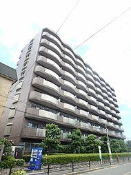 コート・サンファイン[8階]の外観