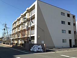 高関コーポ[306号室号室]の外観