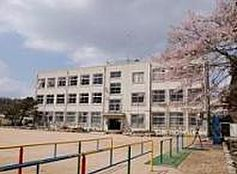 小学校神戸市立 有馬小学校まで1196m