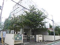 中学校文京区立第10中学校まで377m