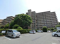 稲毛駅 11.0万円