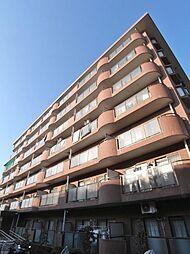 モーニングパーク朝霞[3階]の外観
