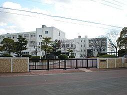 桃陵中学校 徒歩 約15分(約1200m)