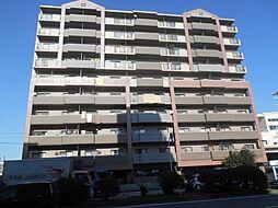 大阪府堺市西区浜寺石津町東1丁の賃貸マンションの外観