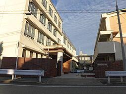 榎小学校 徒歩 約10分(約800m)