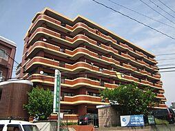 アメニティハイツ杏栄館[5階]の外観