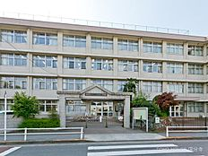 羽村市立小作台小学校 距離800m
