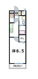 カーサ・ミニョン[1階]の間取り