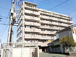 シティライフ箱崎13