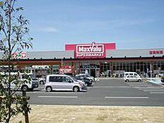 スーパーイオンタウン野口ショッピングセンターまで697m