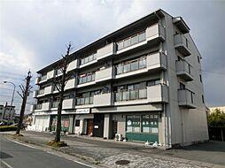 滋賀県大津市大将軍 1丁目の賃貸マンションの外観
